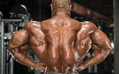 Here's What You Need To Know About Top Sustanon 250 Brands and Products