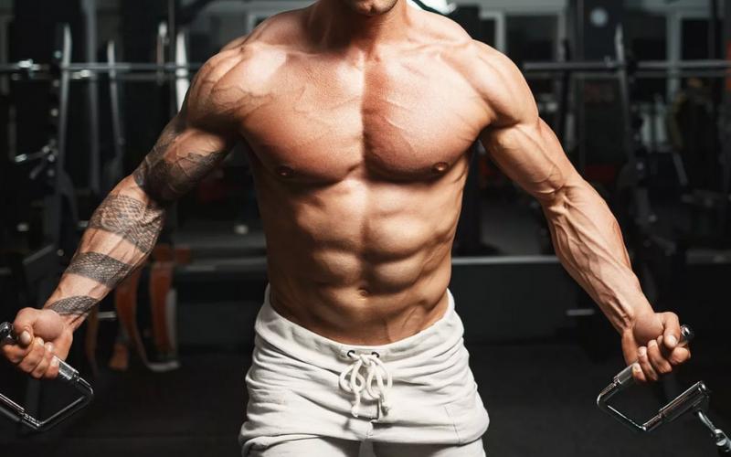 maximum bulking muscles
