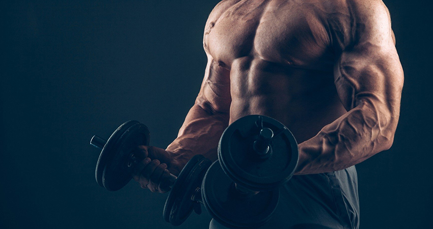 Add Testolic to your steroid cycle!