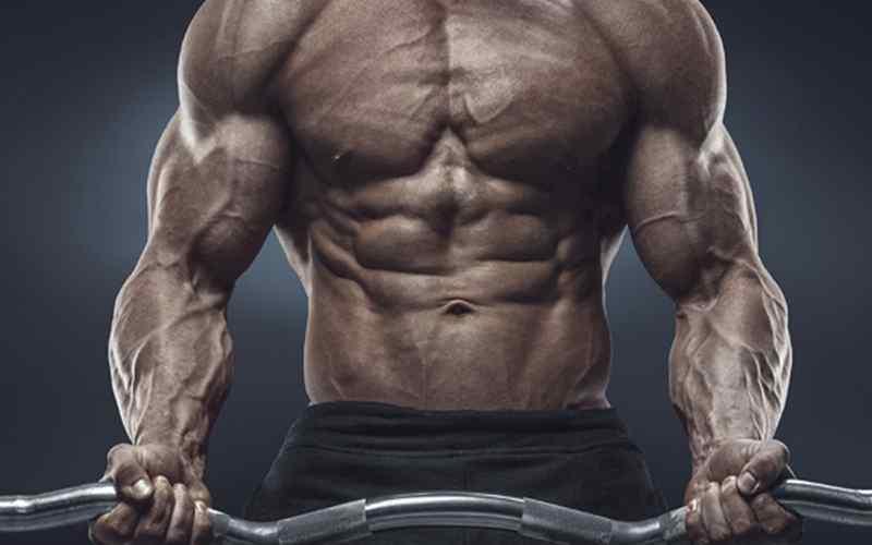 Bodybuilder's physique