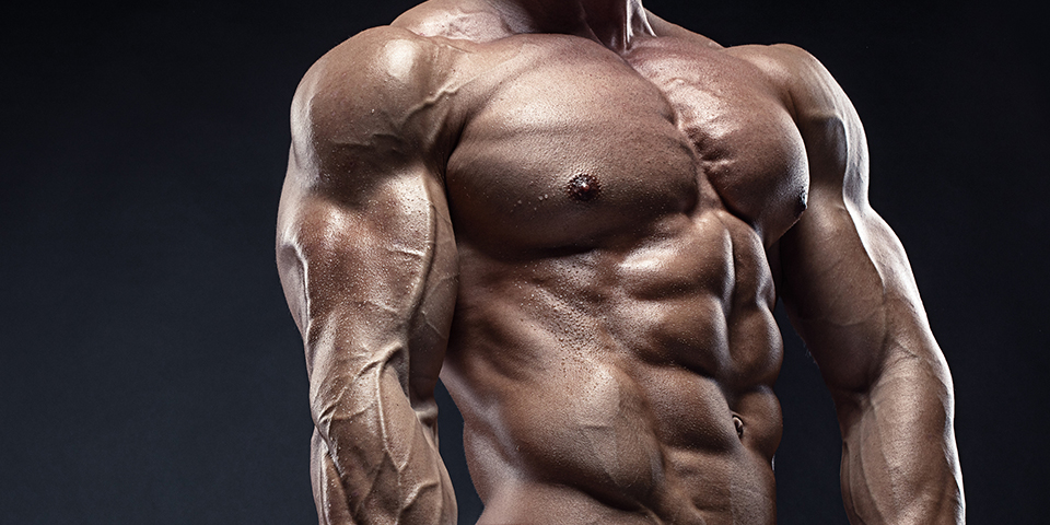 Steroids Used for Bodybuilding