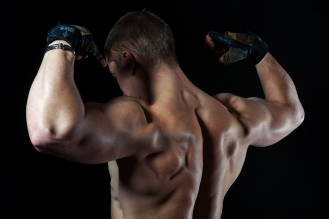 muscle gaining steroids
