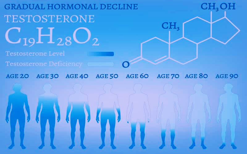 testosterone production level